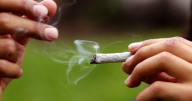 20 representantes a la Cámara le apuestan al Cannabis de uso recreativo