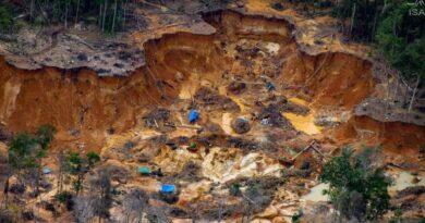 Tiroteo mortal cuando mineros ilegales ingresan a tierras indígenas en Brasil
