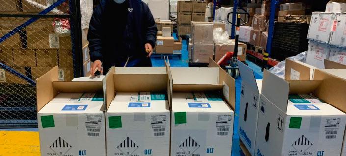 Arribaron 339.300 dosis de vacunas del laboratorio Pfizer